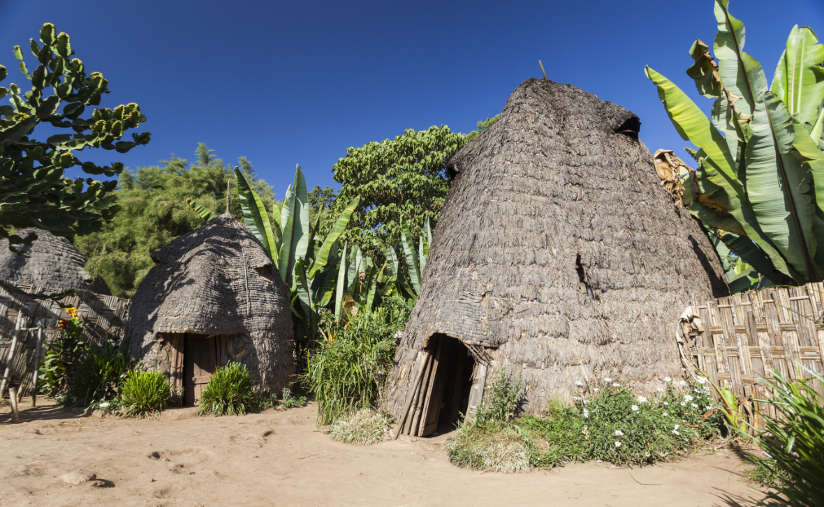 Elephant-shaped houses in a Dorze village